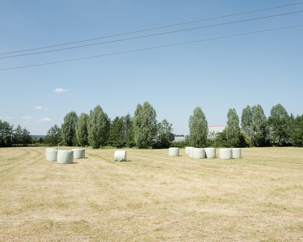 Landscape photo field color