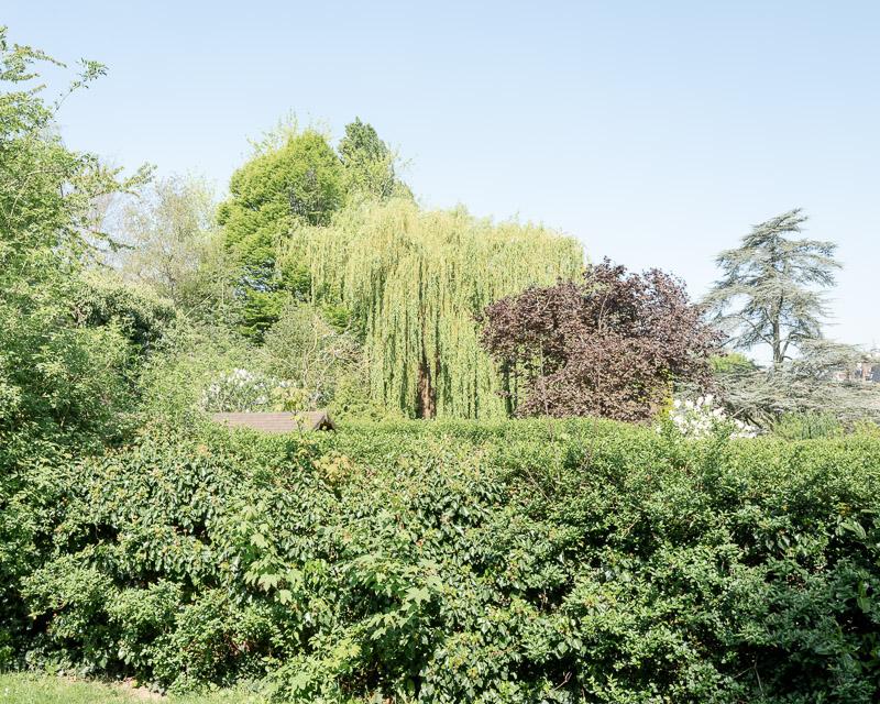 Espace vital, espace privé et espace public, jardins et cabane.